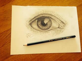 cool eye :) by dvir5335