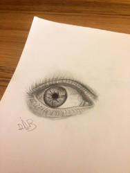quick eye by dvir5335