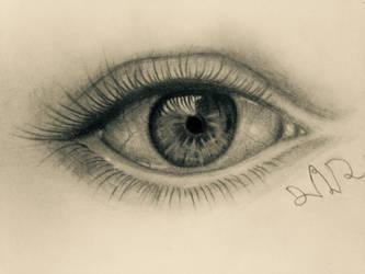 realistic eye drawing by dvir5335