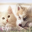 Avatar Ely by Smilened
