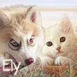 Avatar Ely 2 by Smilened