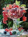 Taste of summer by olegmd