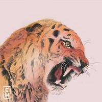 tiger by Choppywings