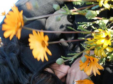 Flower hobo