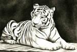 Charcoal Tiger