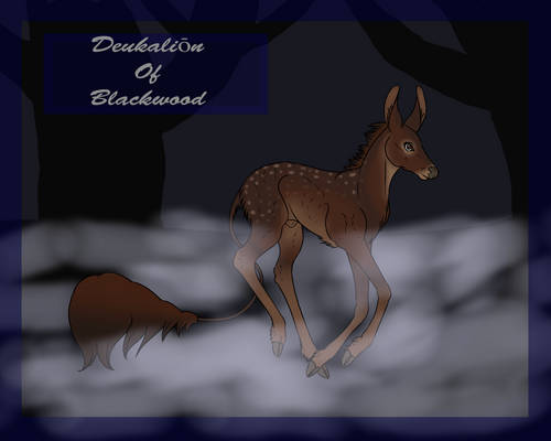 Deukalion Blackwood Herd Fawn