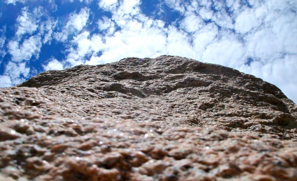 Looking Up by MsKiraJ