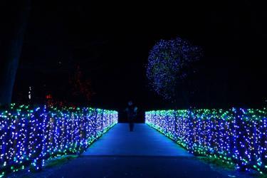 Blue Bridge by bowtiephotography