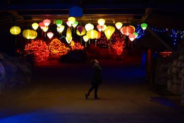 Wanderlust Wonder Lanterns by bowtiephotography
