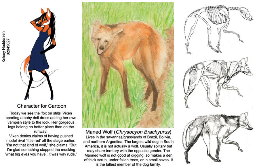 Maned Wolf Pictures Maned Wolf by Kelseyleah