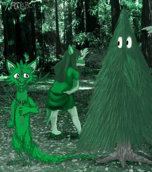 LCAO Green, Matane And X-mas Tree