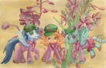 MLP Flowers of Harmony- The Wonderbolts