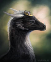 Sugas portrait by Raxrie