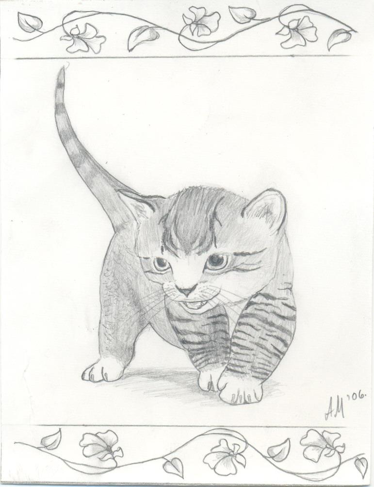 Kitten by Zanten