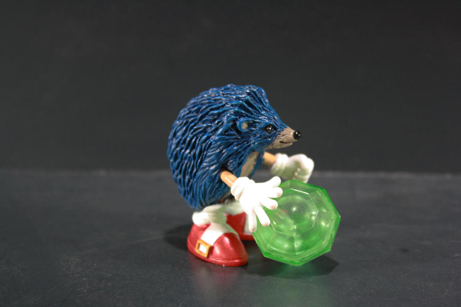 Real Sonic the Hedgehog by kodykoala