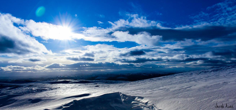 Winter Sun by Oansikt