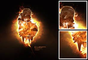 The Phoenix. by Uribaani