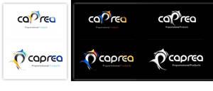 capera_logo_webdesign