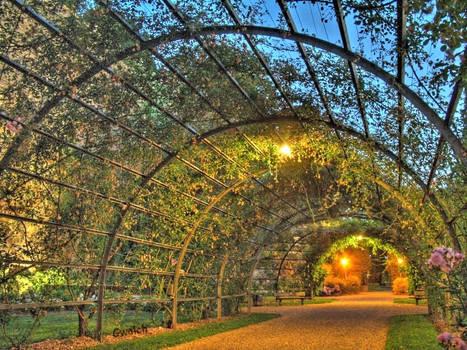 Flower's arch
