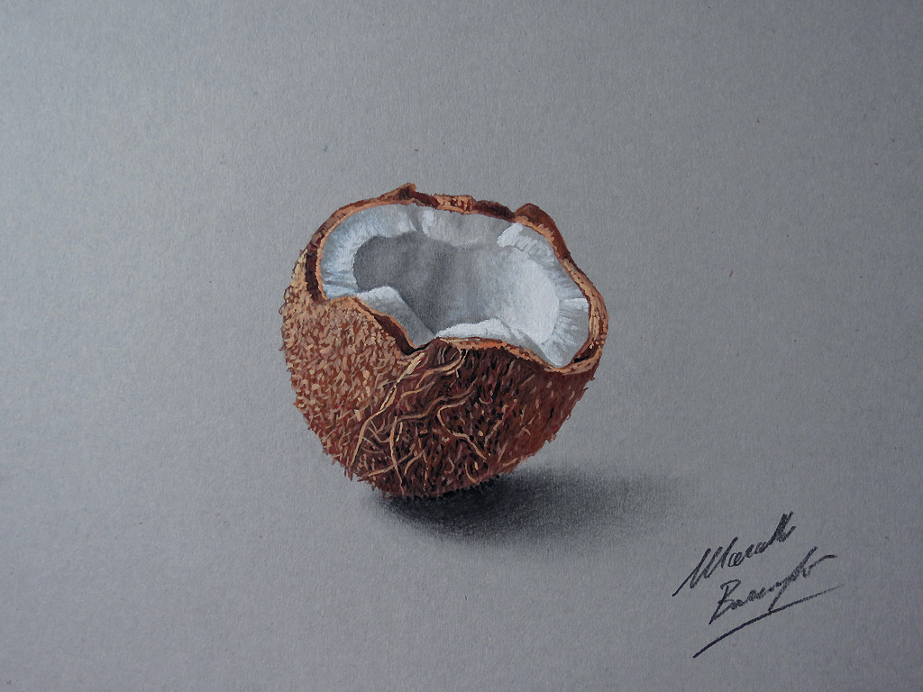 Coconut drawing by marcellobarenghi