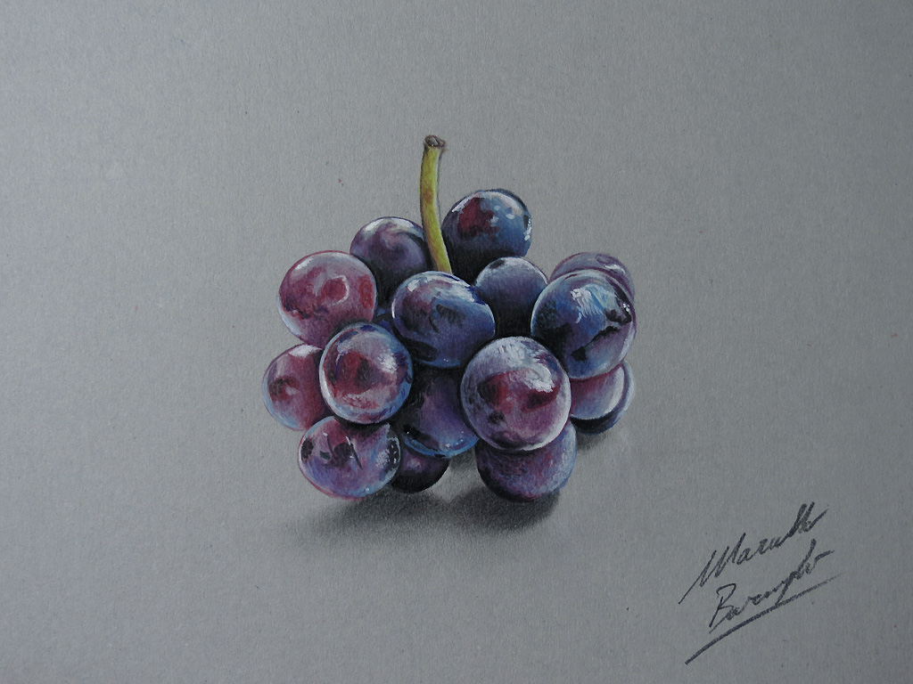 Drawing Grapes By Marcello Barenghi Marcellobarenghi