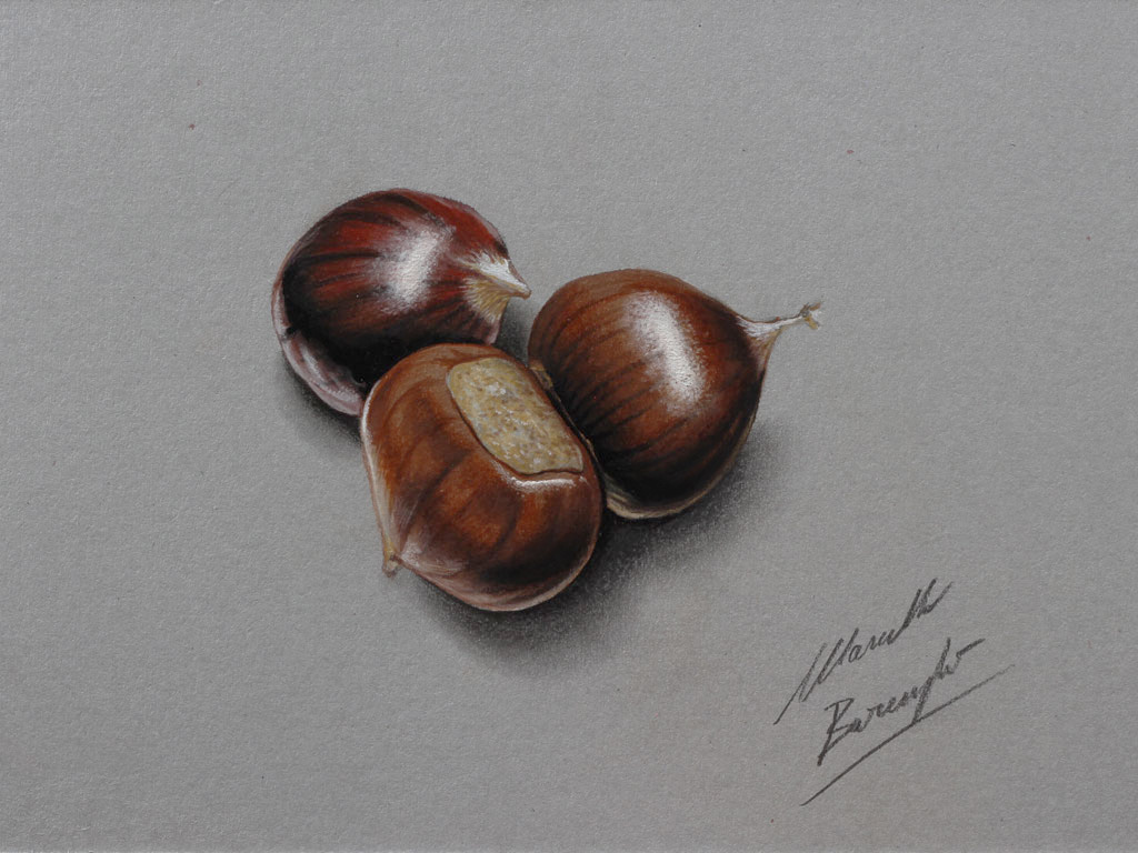 Chestnuts drawing by marcellobarenghi