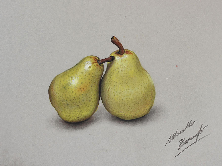 Pears DRAWING By Marcello Barenghi By Marcellobarenghi On