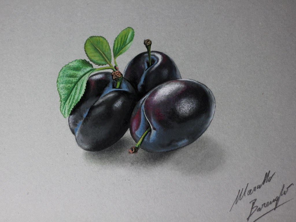 Plums DRAWING by marcellobarenghi
