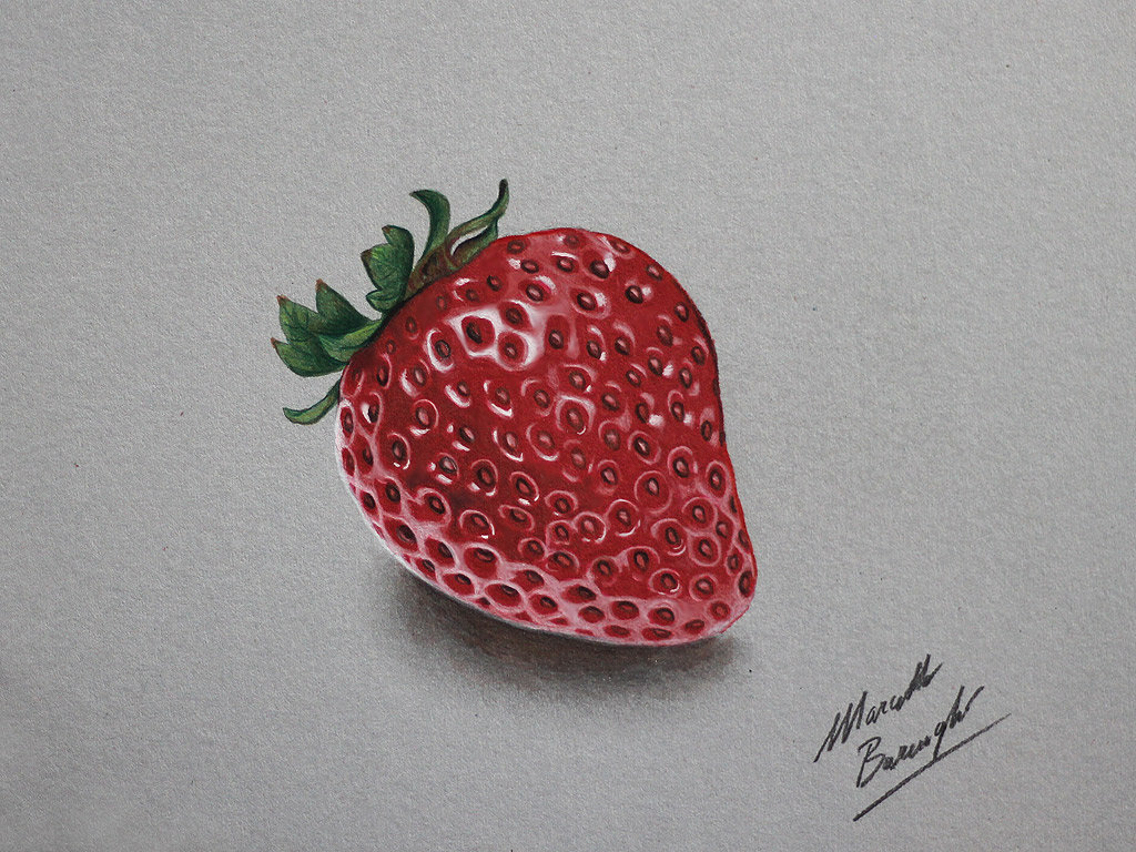 Strawberry DRAWING by Marcello Barenghi by marcellobarenghi
