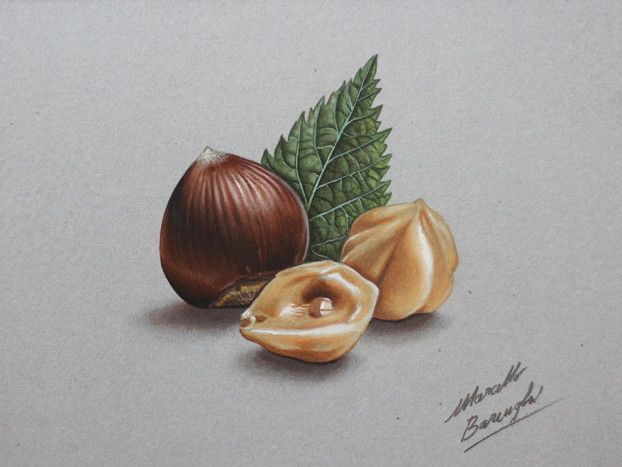 Hazelnuts DRAWING by Marcello Barenghi by marcellobarenghi
