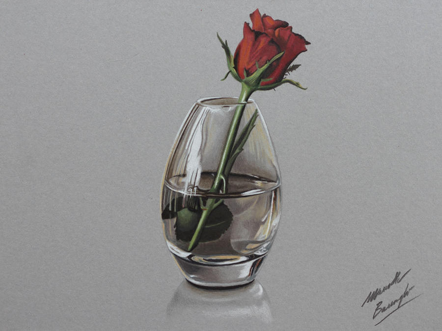 Red rose DRAWING by Marcello Barenghi by marcellobarenghi