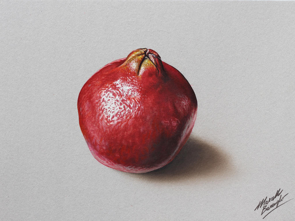 Pomegranate DRAWING by Marcello Barenghi by marcellobarenghi