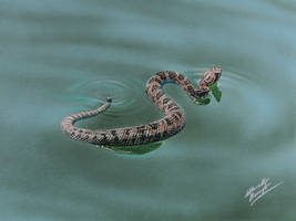 Snake DRAWING by marcellobarenghi