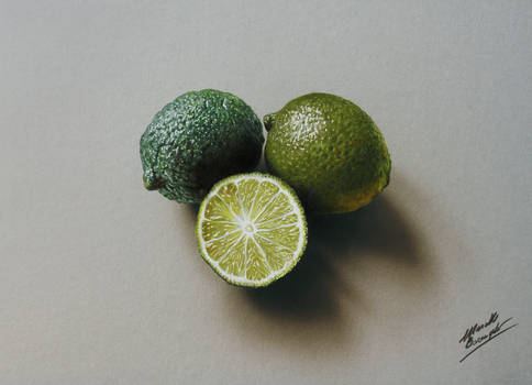3D Drawing: Limes
