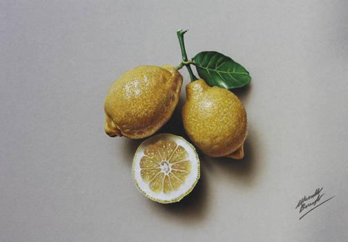 Still Life Drawing Lemons