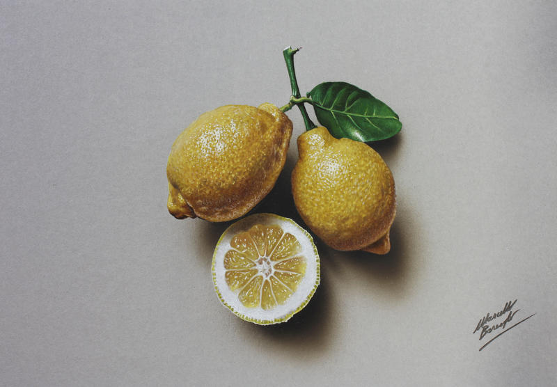 Still Life Drawing Lemons