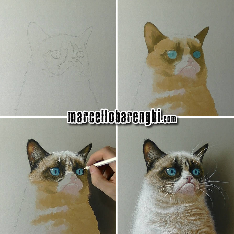 Grumpy Cat Step-bystep Drawing By Marcellobarenghi On