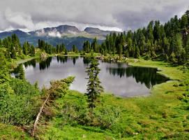 Pond by Sergiba