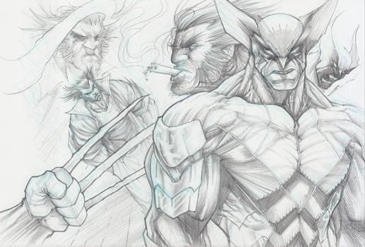Wolverine Collage