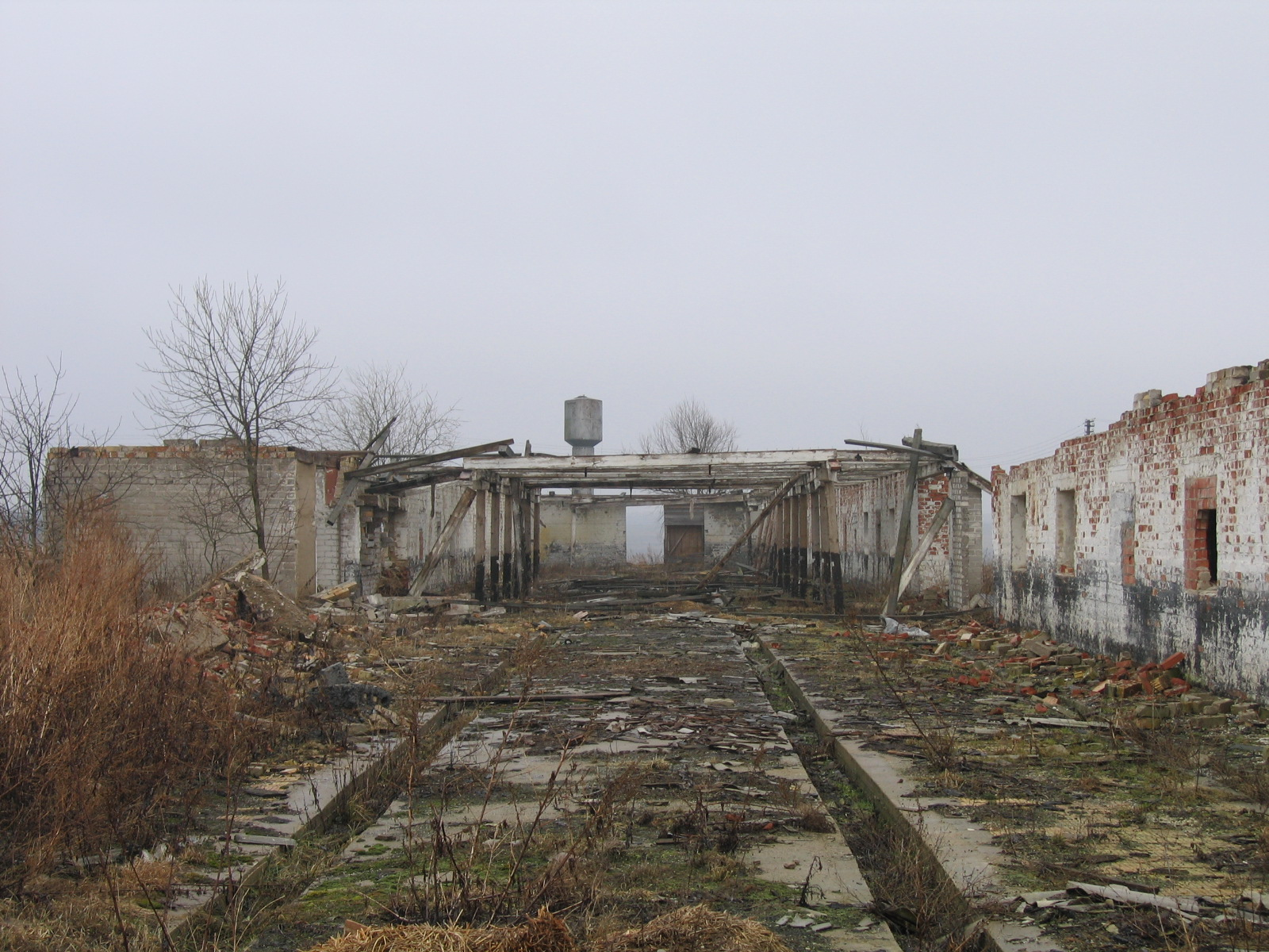 Ruins of the old Soviet farm 2
