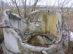Ruins of the old Soviet farm 9