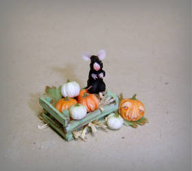 Autumn is coming: The mouse and the pumpkins