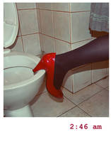i flushed you down the toilet by evelynglyn