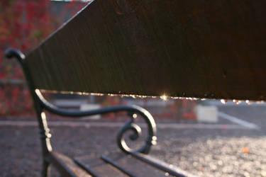 bench by senner
