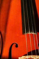 my cello again by senner