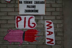 pig man by senner