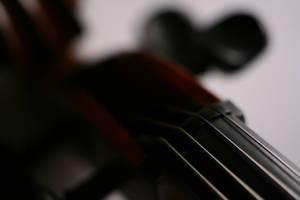cello I by senner