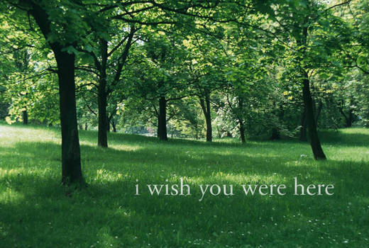 i wish you were here