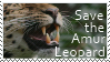 Save the Amur Leopard by Hafr