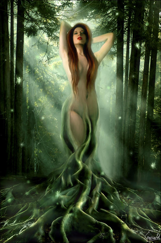 metamorphosis: The Dryad by aselclub